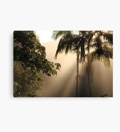 Foggy Winter Morning Canvas Print