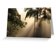 Foggy Winter Morning Greeting Card