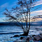 Ancient Shores - Loch Ness at Dusk by Mark Tisdale