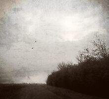 Lane by Nicola Smith