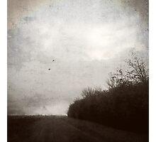 Lane Photographic Print