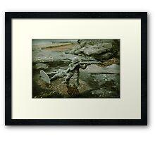 Taking the beach Framed Print