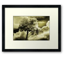 Pause For Thought Framed Print