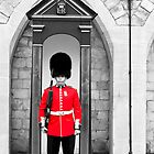 On Guard by Stephen Knowles