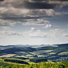 View towards the Tweed Valley, from the Glenpeggy Trail, Cardrona Woods, Scottish Borders by Iain MacLean