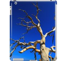 Dead Tree in the Desert iPad Case/Skin