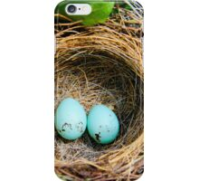 Robins Eggs iPhone Case/Skin