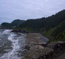 Oregon Coast by David F Putnam