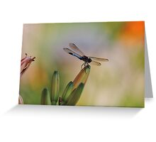 Dragonfly on Bulbs at Last Light Greeting Card