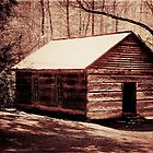 Cabin in the Woods rustic photo art landscape photography by jemvistaprint