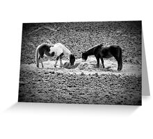Horses in Hay equine artwork black and white art Greeting Card