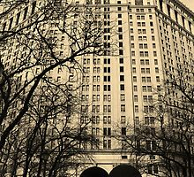 City Hall, Manhattan, New York by storm1313