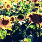 Sunflowers No. 1 by Harry H Hicklin