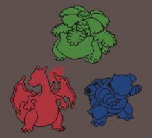 Kanto Coloured Silohouette Starters (Triangle) by Funkymunkey