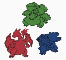 Kanto Coloured Silohouette Starters (Triangle) Kids Clothes