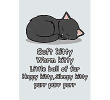 Soft Kitty Photographic Print