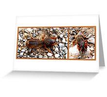 Mole cricket Greeting Card