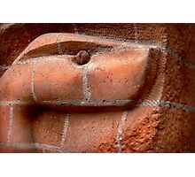 Another Brick Snake In The Wall Photographic Print