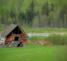 Shed by the Lake by Dyle Warren