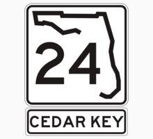 Florida 24 - Cedar Key by IntWanderer