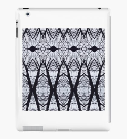 Naked cathedral  iPad Case/Skin