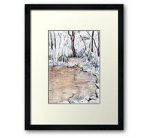 Billabong Framed Print