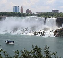 American Falls by Bob Hardy