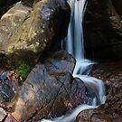 The falls at Olinda by Jeanette Varcoe.