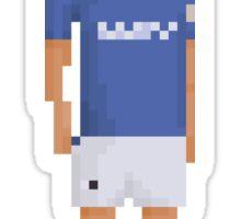 Diego 87 Sticker