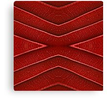 GEOMETRY Red skin Canvas Print