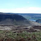 View from Saddleworth Moor by Paul  Green