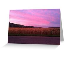Sunrise over Corn Greeting Card