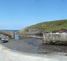 Porthgain Harbour by Paul  Green