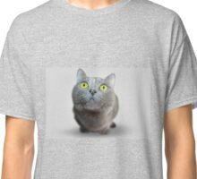 Wide Eyed Grey Cat Classic T-Shirt