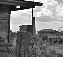 Neighborly View-- Ruined Ranch House, Cuervo, New Mexico by CandyApplCrafts