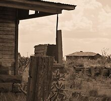 Neighborly View -- Ruined Ranch House, Cuervo, New Mexico by CandyApplCrafts