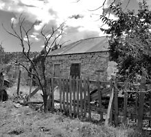 Good Fences -- Ruined House, Cuervo, New Mexico by CandyApplCrafts