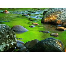 River Reflections Second Act Photographic Print