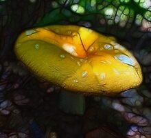 A fairy shroom (for autumwind) by vigor