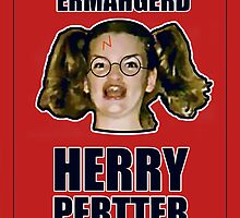 ERMAHGERD HERRY PERTTER by AlliVanes