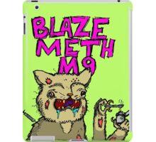 Blaze Cat iPad Case/Skin