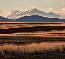 Lines And Rockies by Gregory J Summers