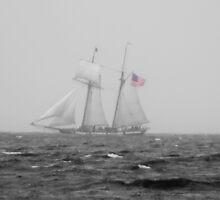 B & W Tall Ship In The Fog With A Hint Of Red by Tina Hailey