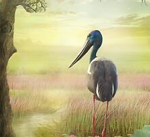 Jabiru Dreaming by Trudi's Images