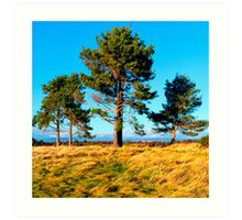 Stand Tall Brothers - Culloden Moors Art Print