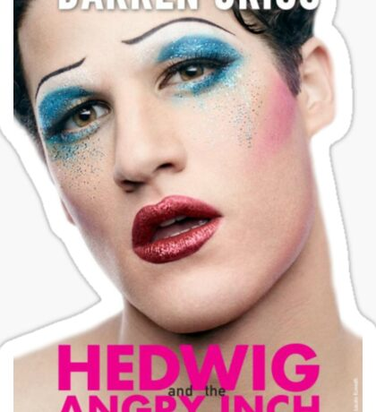 Darren Criss Hedwig and the Angry Inch Sticker