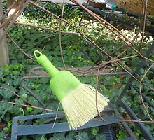 Wired Broom  by Grace314