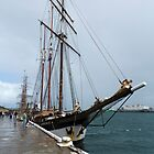 "Dutch Tall Ship ""Oosterschelde by Nigel Donald"