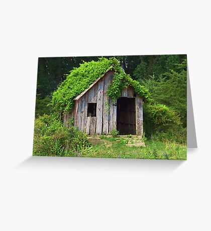 Vines Upon the Roof Greeting Card