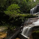 Silky at Somersby Falls by Jason Ruth